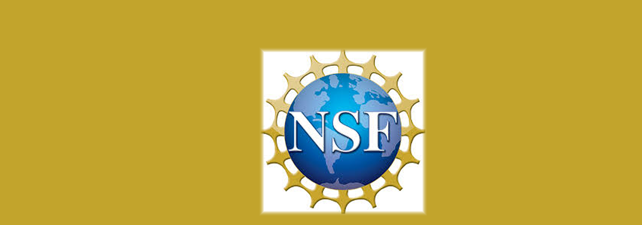 banner with NSF logo for the 2019 career awards marquee